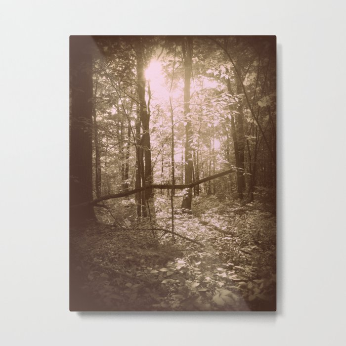 There's Something Magical About Trees Metal Print