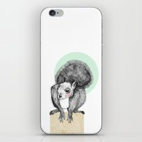 squirrel iPhone & iPod Skins featuring Squirrel by Wood + Ink