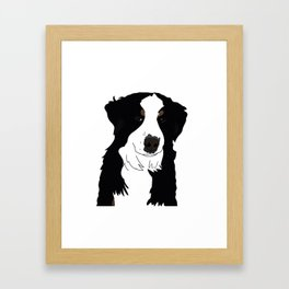 Olive the Bernese Mountain Dog Framed Art Print