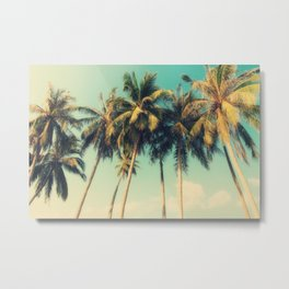 tropical trees in florida Metal Print