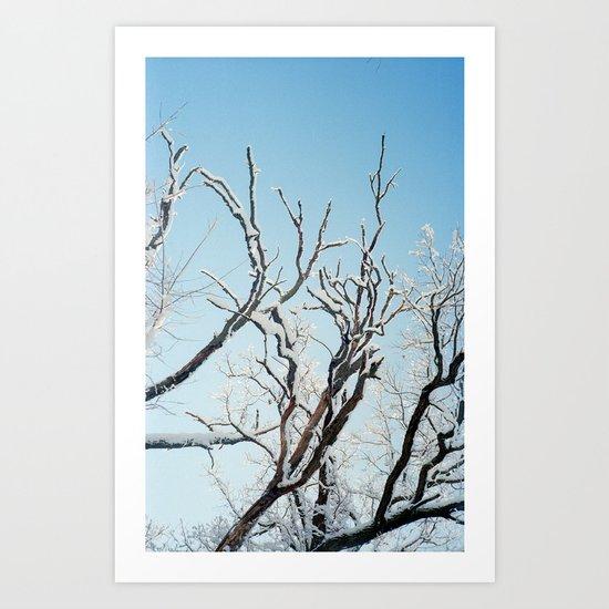 February II Art Print