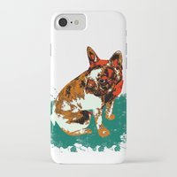 pitbull iPhone & iPod Cases featuring PITBULL by Guille Pachelo