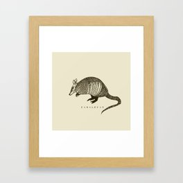 Armadillo power Framed Art Print