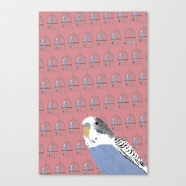 The Budgie Gallery Giftshop Canvas Print