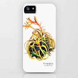 Tillandsia Xerographica Air Plant Watercolor iPhone Case