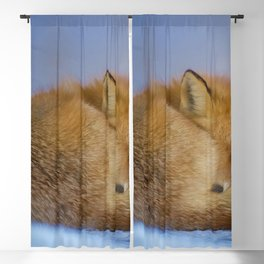 Little Fox Blackout Curtain