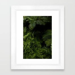 Tropical jungle. Framed Art Print