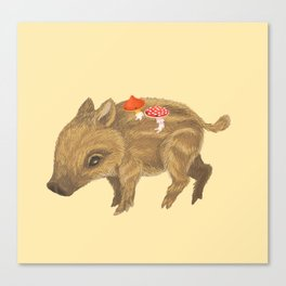 Child wild boar and mushrooms Canvas Print
