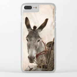 The curios donkey Clear iPhone Case