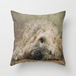 Wheaten Terrier - Let Sleeping Dogs Lie Throw Pillow