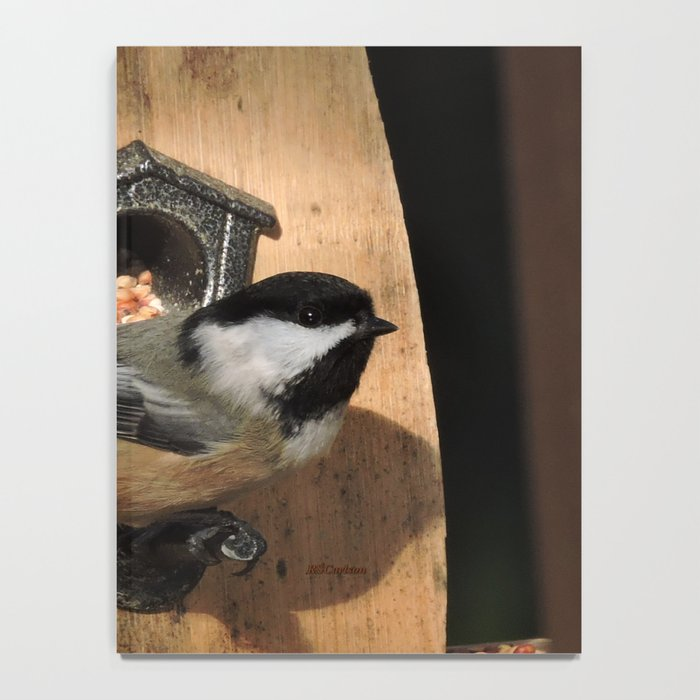 Black-Capped Chickadee at the Feeder Notebook