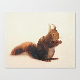 Veluwe: Squirrel Canvas Print