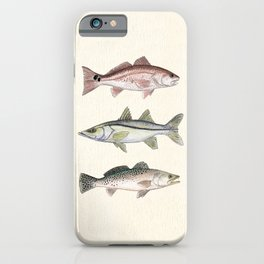 """Inshore Slam!"" by Amber Marine ~ Redfish, Snook, & Trout Watercolor Illustration, (Copyright 2013) iPhone Case"