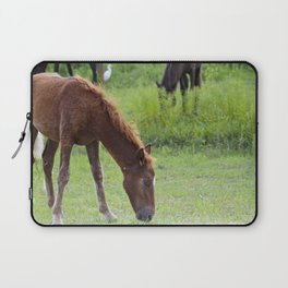 Wild Spanish mustang colt Laptop Sleeve