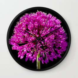 Allium in art Wall Clock
