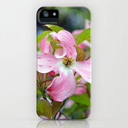 Lovely pink dogwoods iPhone Case