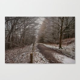 The Cycle Path in Winter Canvas Print