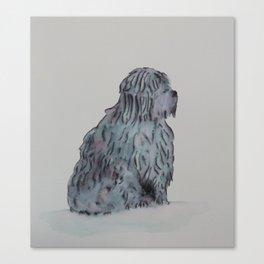 Tibetan Terrier Sitting Canvas Print