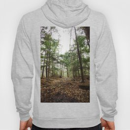 lost woods Hoody