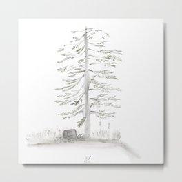 Brine Pine ・Salty Spruce Metal Print