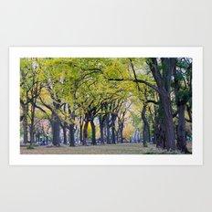 Central Park Fall Series 8 Art Print