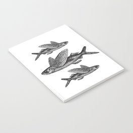 Flying Fish | Black and White Notebook