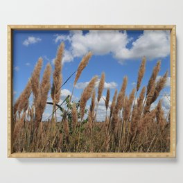 Field of Sugarcane Plumegrass in Sheldon Lake State Park Texas Serving Tray