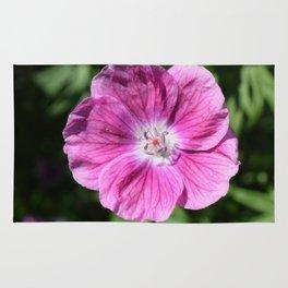 Pink summer flower blossom (Macro Close-Up) Rug