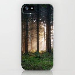 Winter Sunbeams iPhone Case