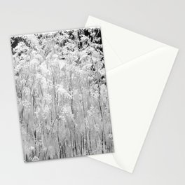 Flower | Flowers | Frosted Ornamental Grasses Stationery Cards