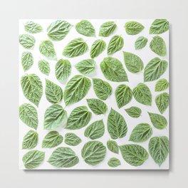 Leaves pattern (28) Metal Print