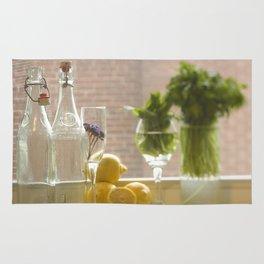 Kitchen View Rug