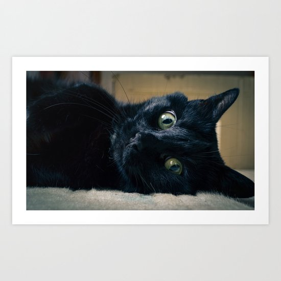 """""""Pet me like one of your french girls"""" Art Print"""