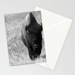Bison - Monochrom Stationery Cards