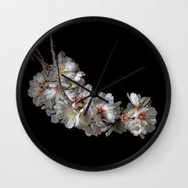 Almond blossoms -2 Wall Clock
