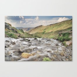 San Juan river Canvas Print