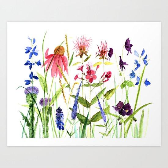 Botanical Colorful Flower Wildflower Watercolor Illustration Art Print