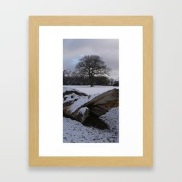 New Forest in the snow Framed Art Print