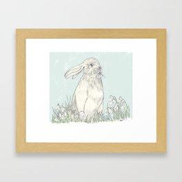 bunny II Framed Art Print