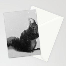 Squirrel (B&W) Stationery Cards