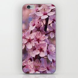Backyard Blossoms iPhone Skin