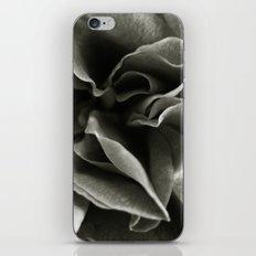 'ROSE' iPhone & iPod Skin
