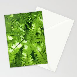 JW Photography Stationery Cards