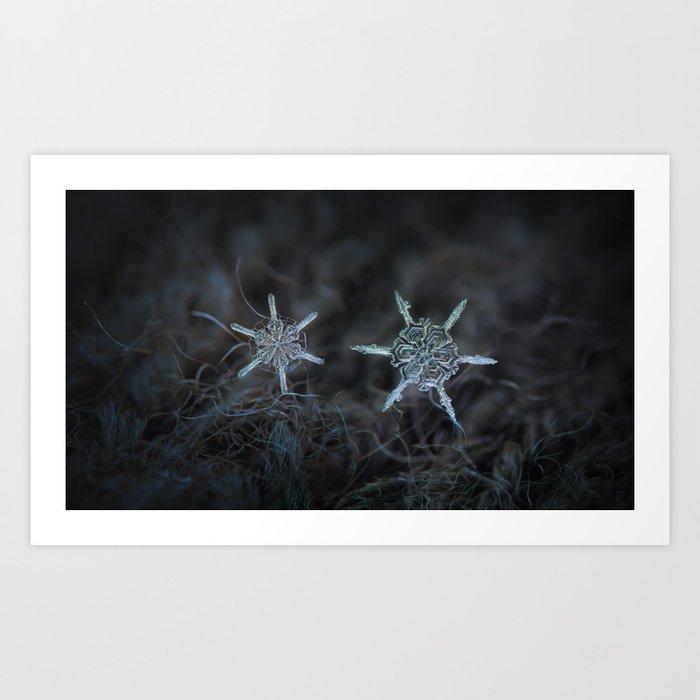 Real snowflake macro photo - When winters meets Art Print