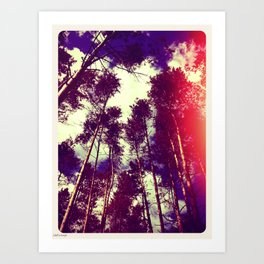 There is a pleasure in the pathless woods... Art Print