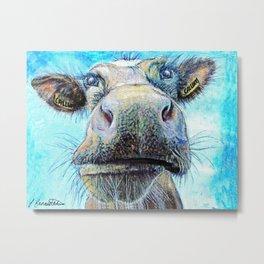 callum coo, the highland cow Metal Print