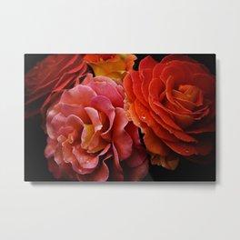 Spanish Dancer Roses Metal Print