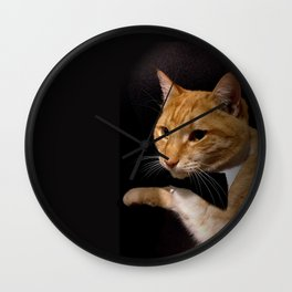 The Cat Who Loved Me Wall Clock