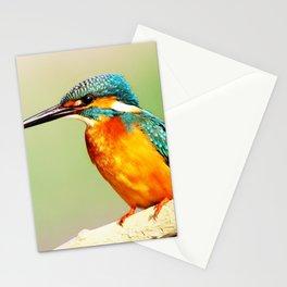 Bright Orange Stationery Cards