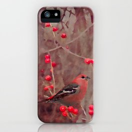 Winter Bird iPhone Case